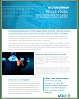 Cybersecurity Breach Radar - Terra Verde - cStor