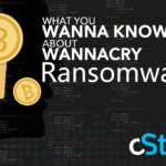 What You WANNA KNOW About the WANNACRY Ransomware Attack & What You WANNA Do About it Now