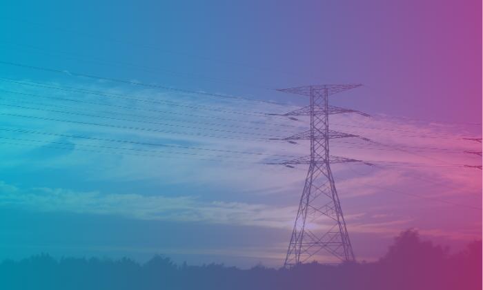 ManageWise Utility Company Case Study